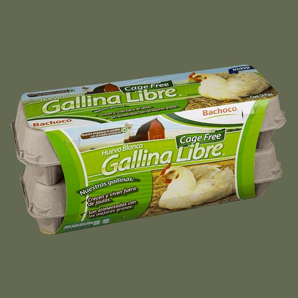 Huevo de Gallina Libre 2Pack