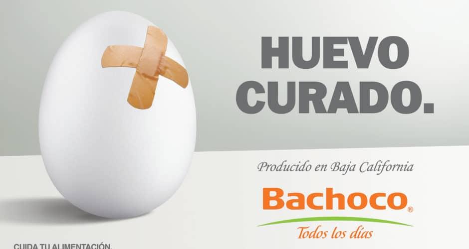 Huevo curado