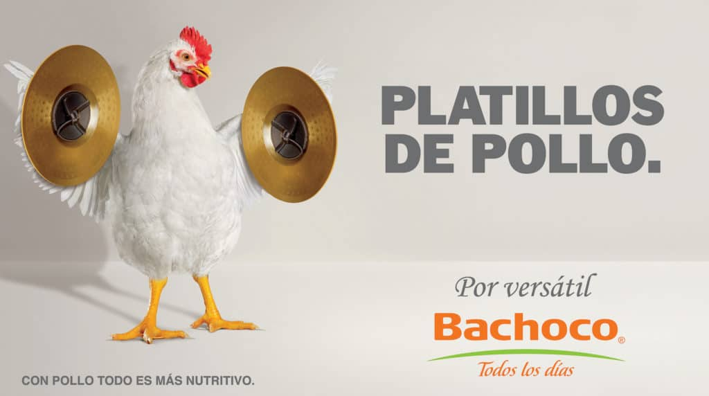 Platillos de pollo