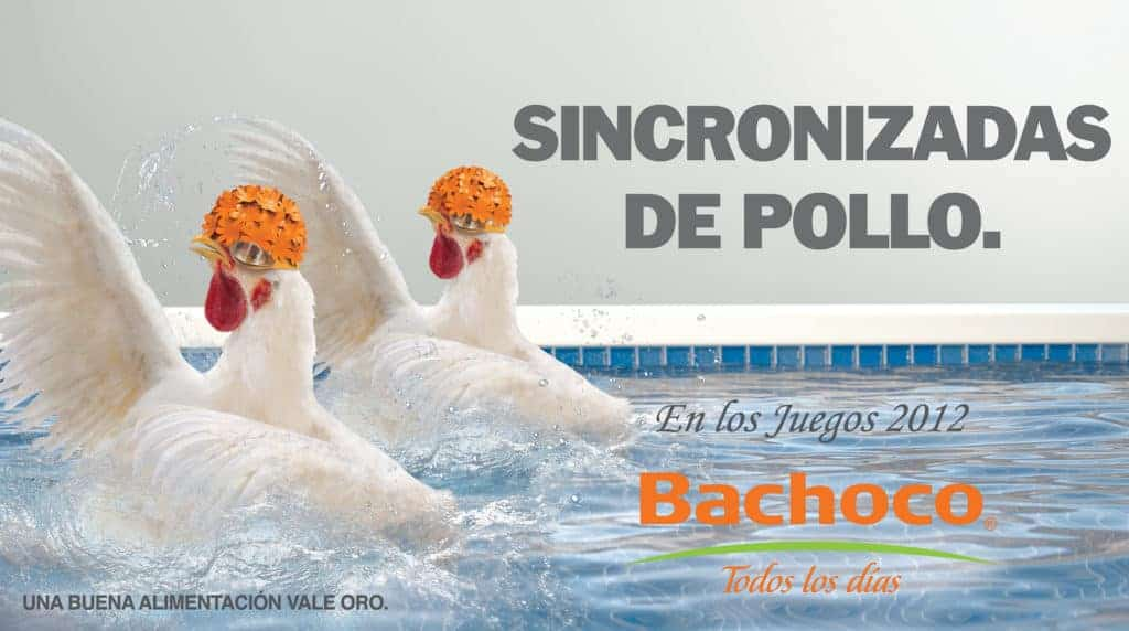 Sincronizadas de pollo