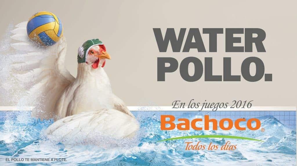 Water pollo