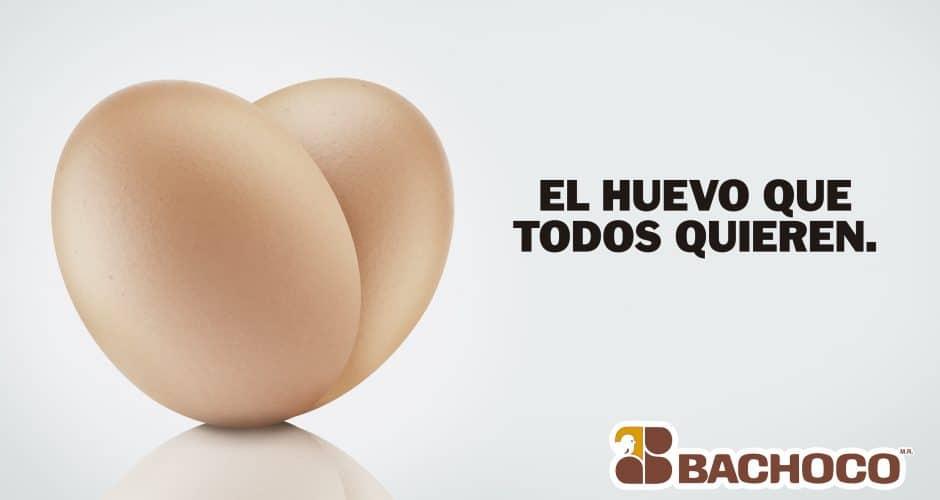 El huevo que todos quieren