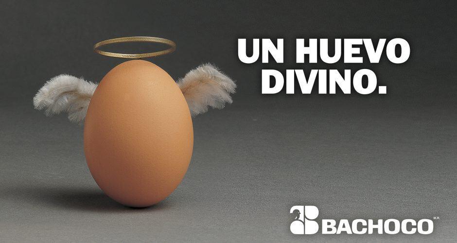 Un huevo divino