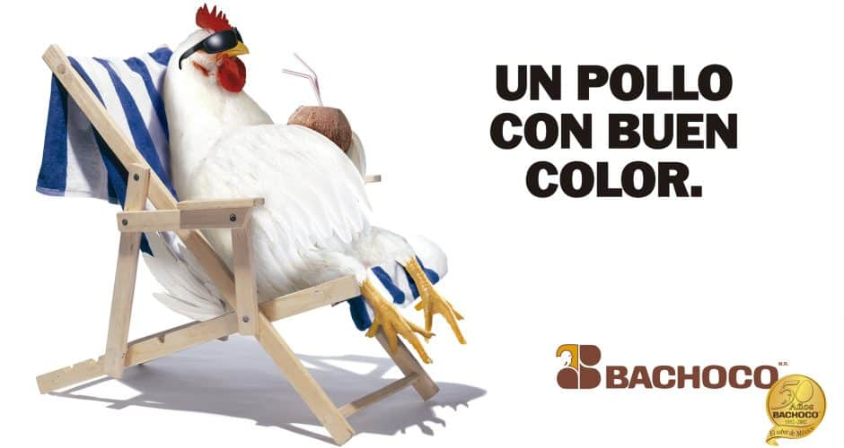 Un pollo de buen color