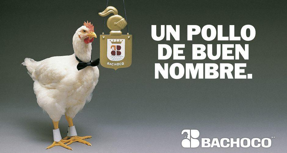 Un pollo buen nombre
