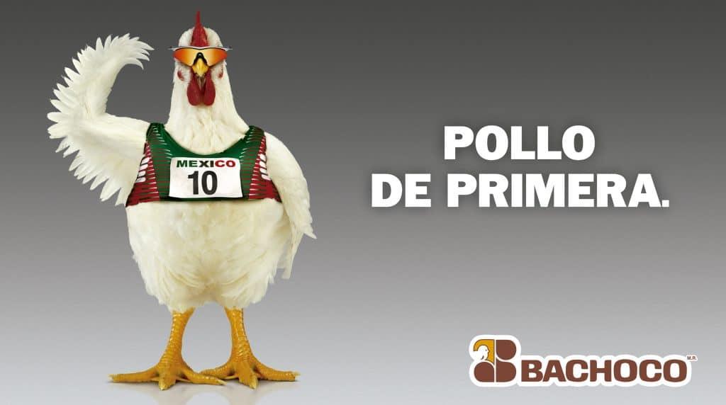 Pollo de primera