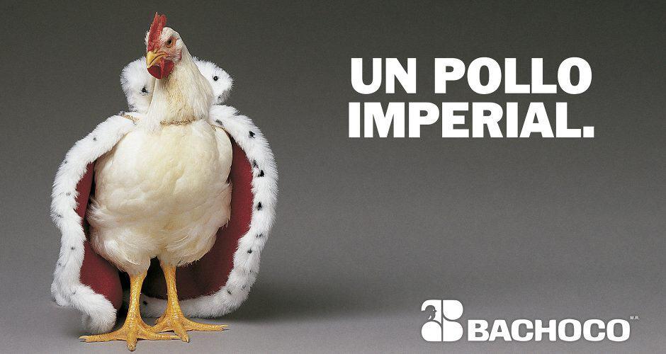Un pollo imperial