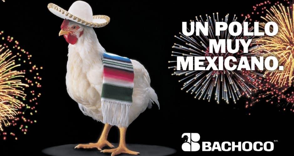 Un pollo muy mexicano