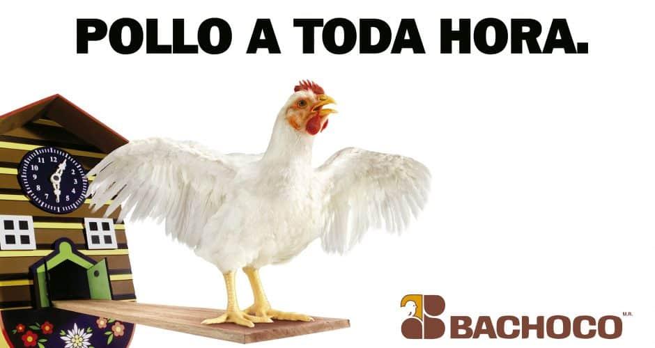 Pollo a toda hora