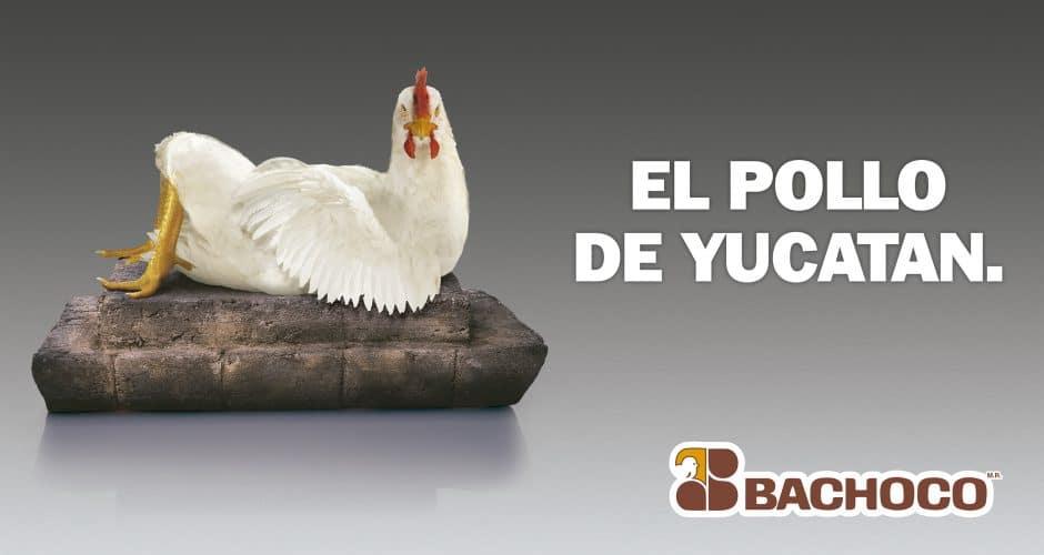 El pollo de Yucatán