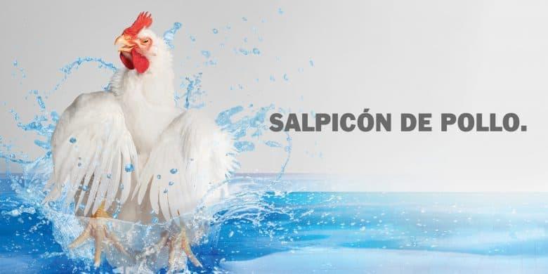 Salpicón de pollo