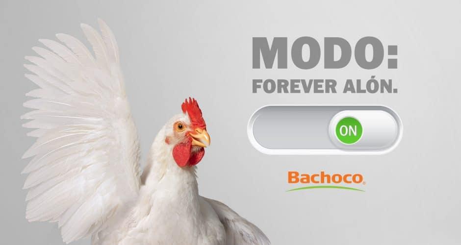 Modo: Forever Alón