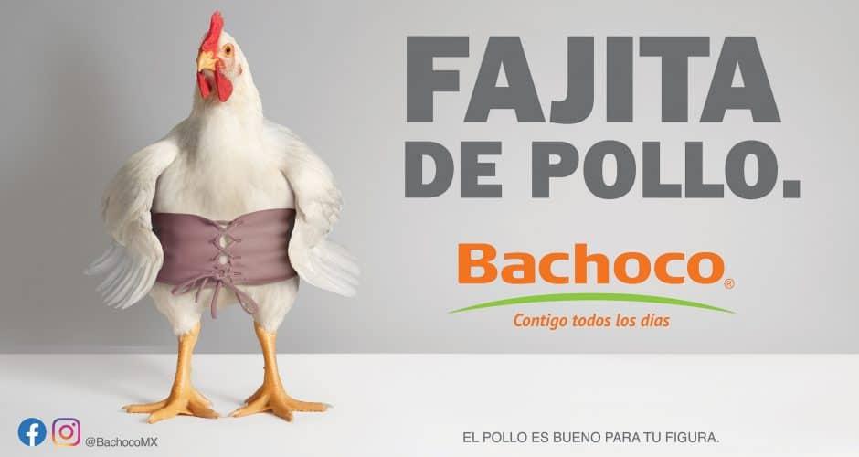 Fajita de pollo