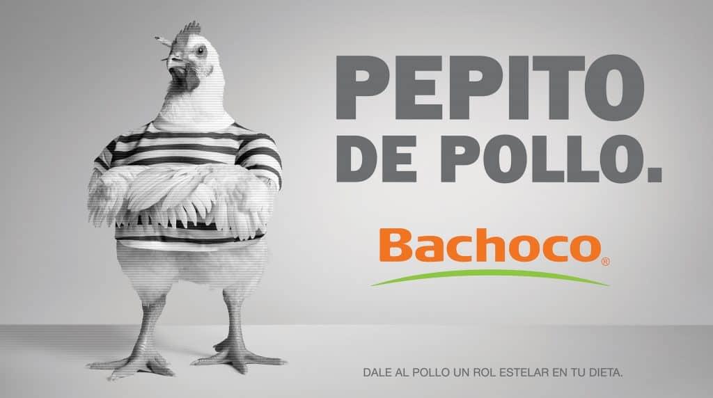 Pepito de pollo