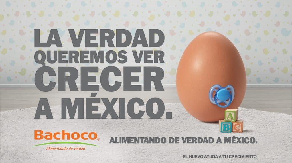 VER-CRECER-MEXICO-BACHOCO