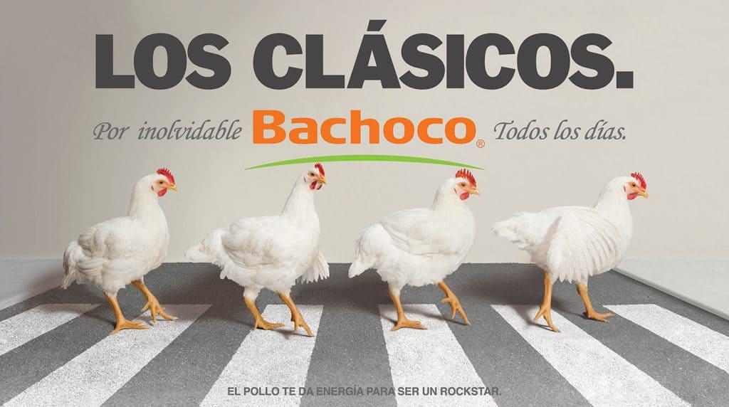 Los clásicos Bachoco