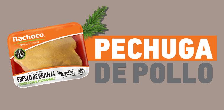 pechuga-de-pollo.png