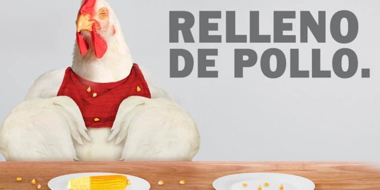 pollo relleno bachoco