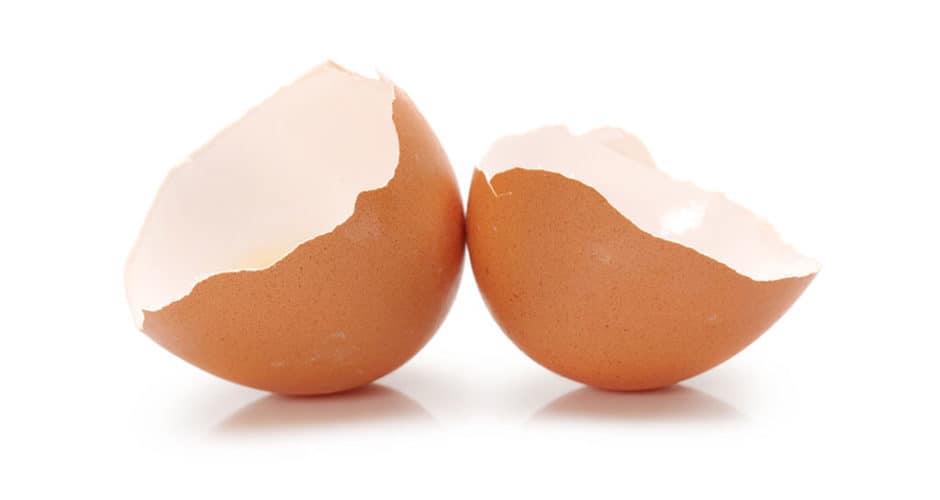 bachoco_segunda vida a la cascara de huevo